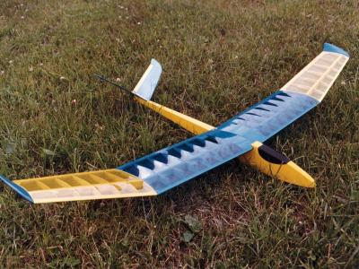 Bild: Flugmodell Libelle Competition 2